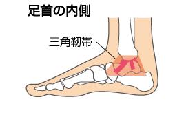 足関節.1ng