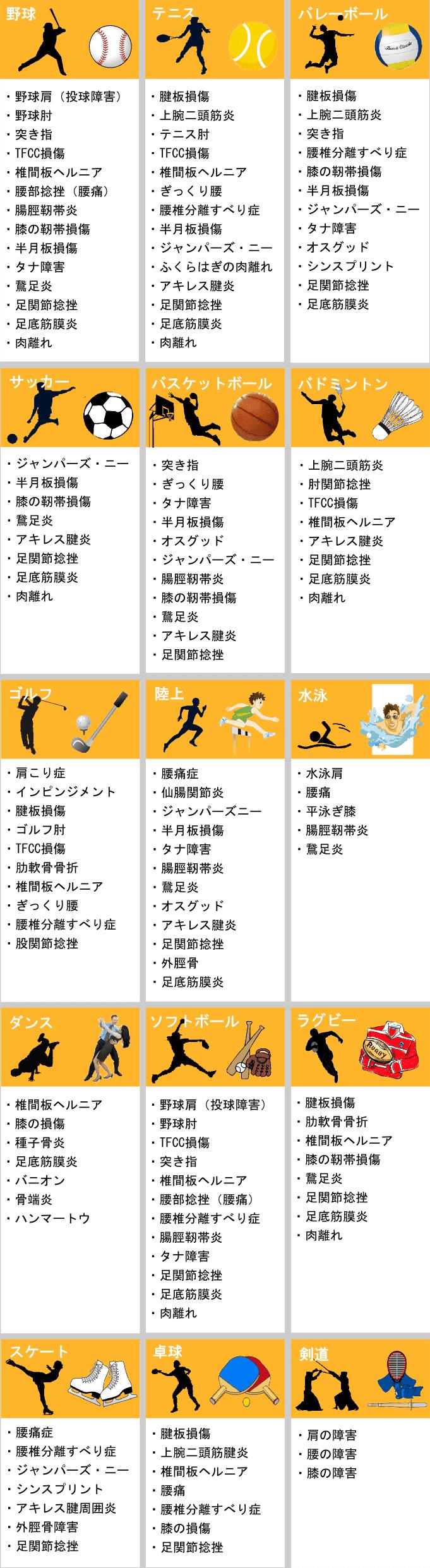 sport syougai